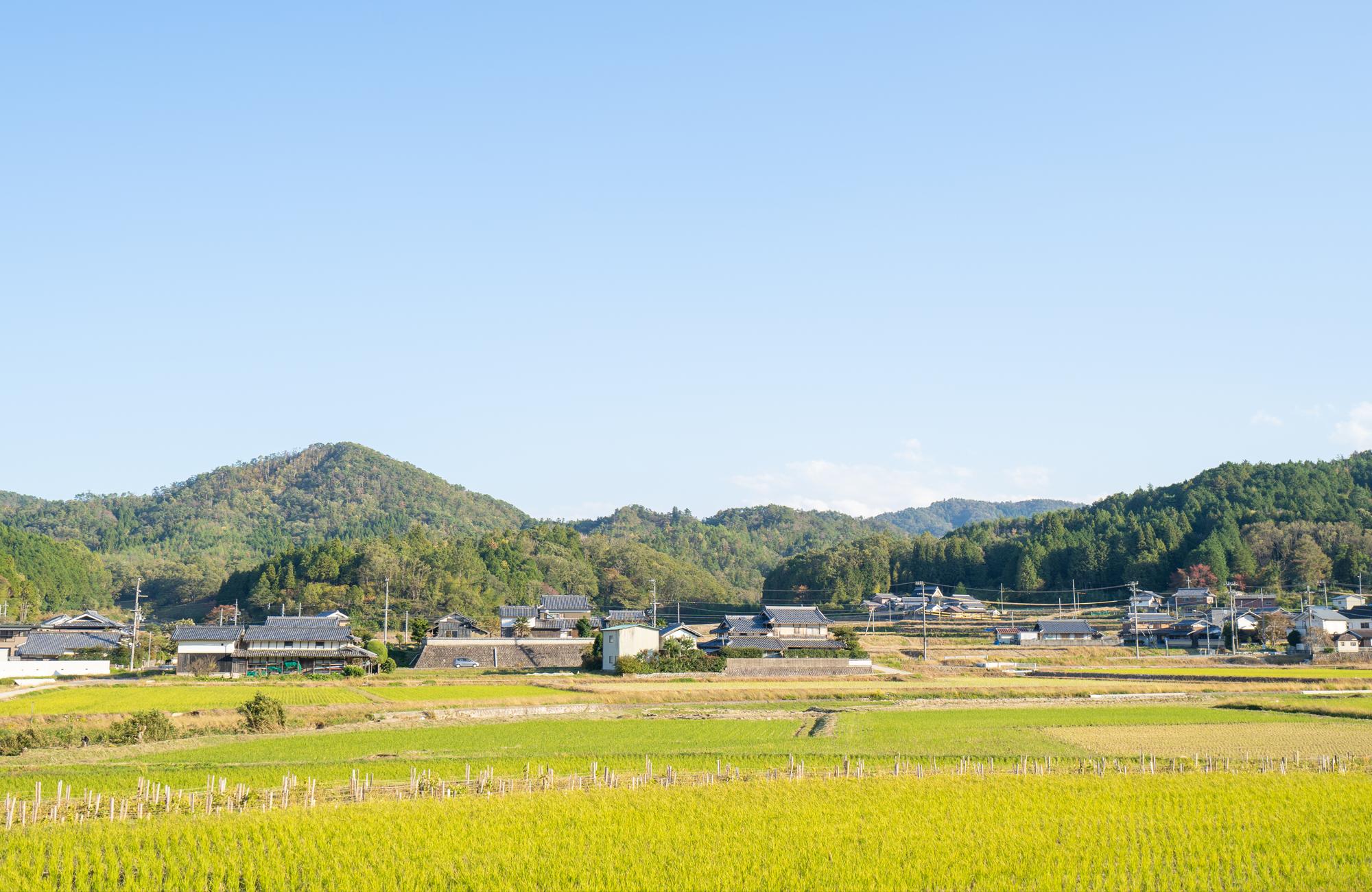 京都府農業青年クラブ連絡協議会
